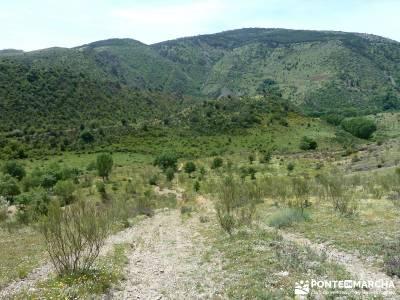 Carcavas de Alpedrete de la Sierra y Meandros del Lozoya;conocer gente madrid;rutas madrid